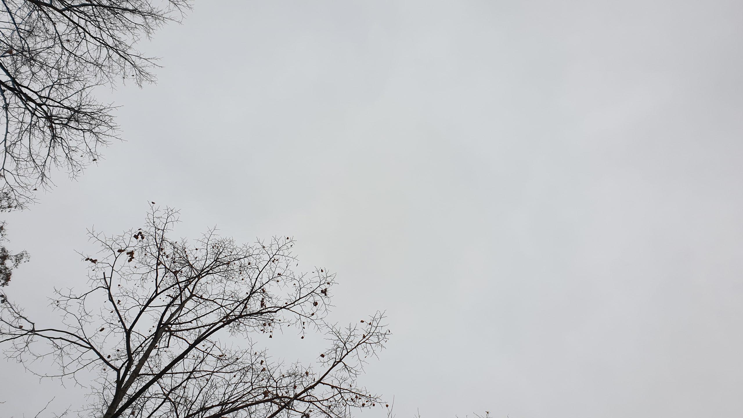 Über graues Wetter